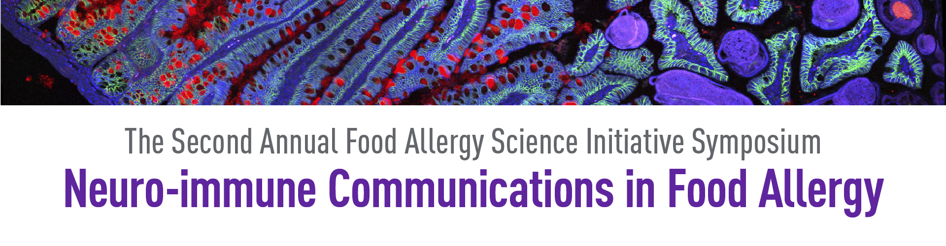 More Information: 2nd Annual Food Allergy Science Initiative