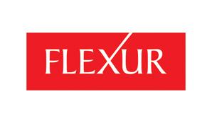 Flexur Systems Inc.