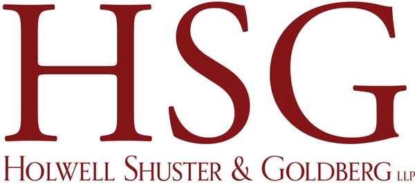 Holwell Shuster & Goldberg