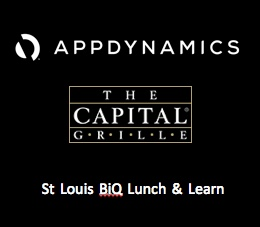 St. Louis BiQ Lunch and Learn